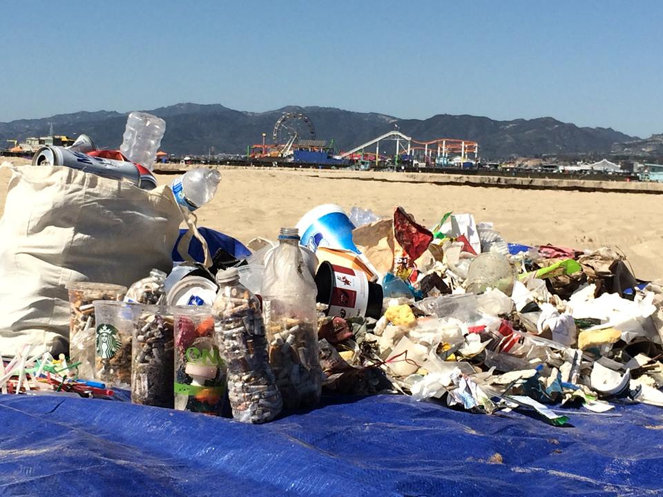 SANTA MONICA CLEAN UP SUCCESS